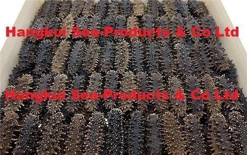 Dried Sea Cucumbers (Spiky)