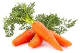 Fresh Carrot Vegetables