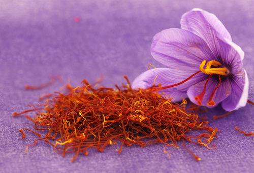 Pure Saffron in  New Area