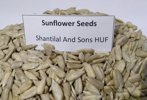 Sunflower Seed in  Sapna Sangeeta
