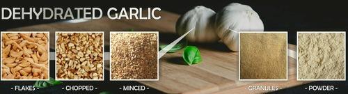 Dehydrated Garlic in   Mota Jadra