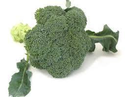 Organic Broccoli in  Mulund (W)