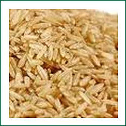 Brown Organic Rice in   Nethimedu