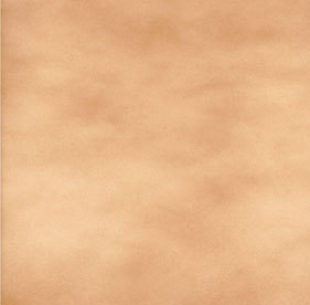 Tan Brown Floor Tiles