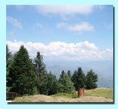 Shimla & Around Packages