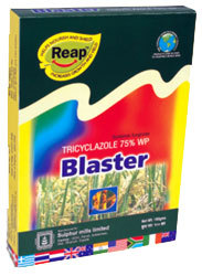 Blaster-Tricyclazole 75% WP in  Andheri (E)
