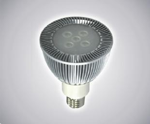 LED PAR Spot Light