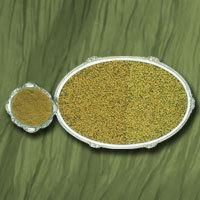 Coriander Seed / Powder