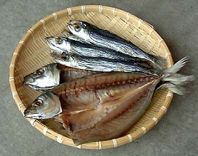 Dry fish in bokkapatna mangalore exporter and manufacturer for Salted cod fish near me
