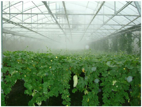 Greenhouse Misting System In Bao An District Shenzhen