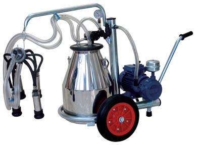 Milking Machines in   Opposite Medical College Post