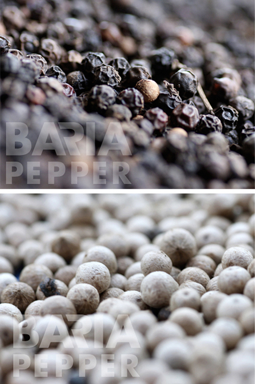 Black And White Pepper