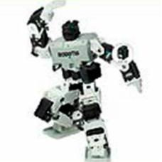 Versatile Humanoid Robotic Kit