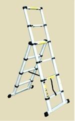 Combi-Telescopic Ladders