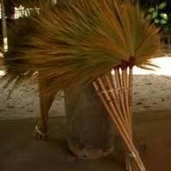 Hill Grass Brooms