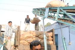 Loading Machine in  Naroda