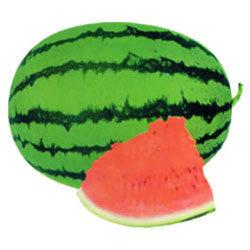 Maharaja Watermelon Seeds