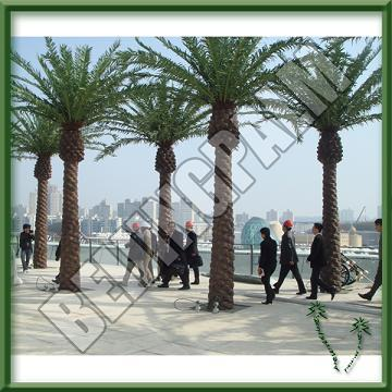 Outdoor Artificial Canary Palm Tree