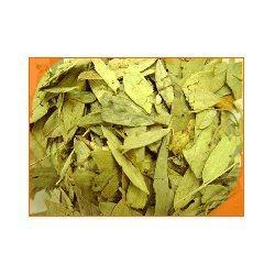 Calcium Sennosides (Cassia Angustifolia)