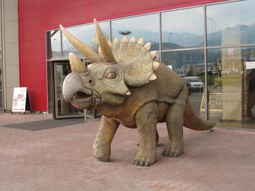 Funny Triceraptos