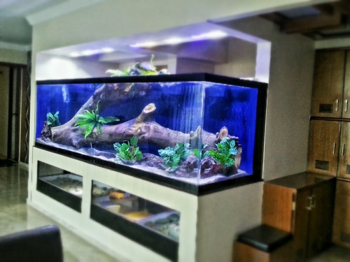 Aquarium Fiberglass Drift Wood In Pune Maharashtra Knt