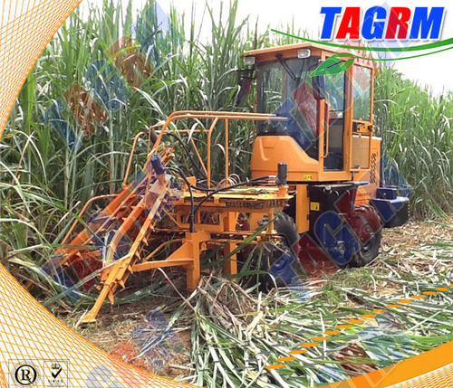 SH15 New Upgrade Sugarcane Harvesting And Cutting Machine