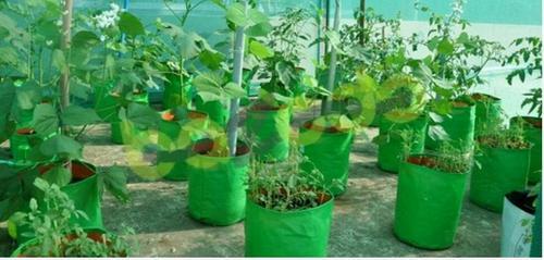 Garden Plant Grow Bags