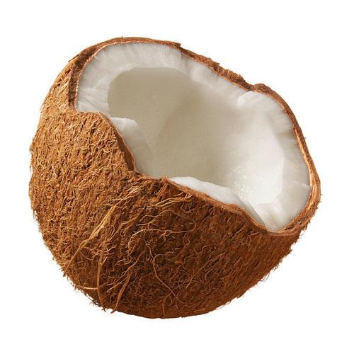 Organic Coconut in  Villivakkam
