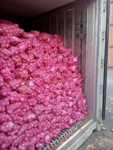 Organic Red Onion in  Thane (W)