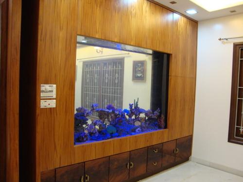 Office Aquarium In Anna Salai Chennai Aquarium Design India
