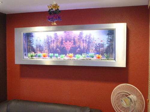 Slim wall mounted photo frame aquarium in anna salai for Wall mounted fish tank