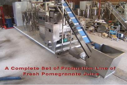 A Complete Set Of Production Line For Fresh Pomegranate Juice