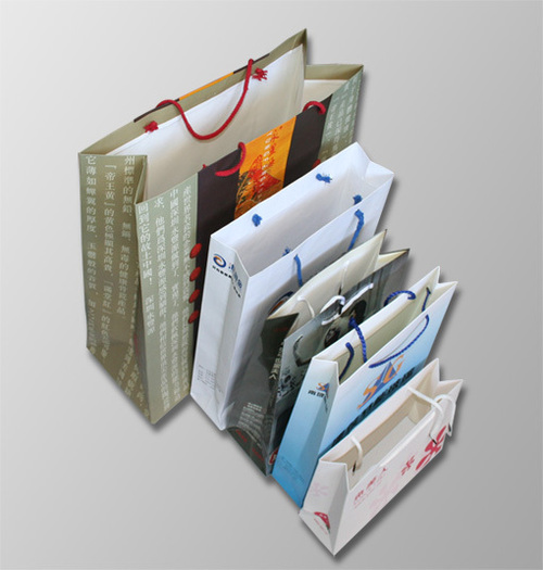 Art Paper Bag Printing Services