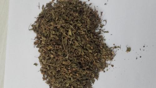 Organic Tulsi in   Kamla Nagar