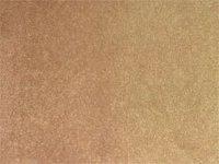 Lotus Wall To Wall Rossini Carpets