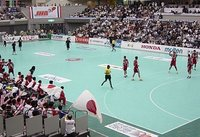 Synthetic Handball Court
