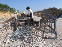 Fresh Cassava Chipping Machine