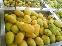 Mango Pulp (Puree)