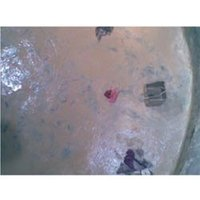 Overhead Water Tank Proofing Services