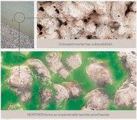 Novithor Termite Proof Resin