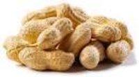 Hps Groundnut Shelled