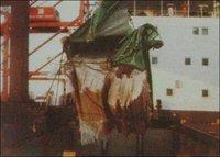 Marine And Cargo Surveys