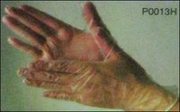 Vinyl (Pvc) Gloves