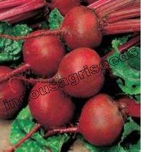 Beetroot Hybrid Seeds