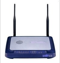 Wireless Intrusion System
