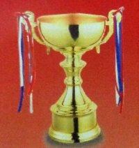 Metal Trophies (T2427/H35)