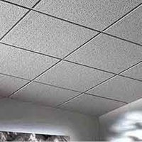 Thermocol Ceiling Service