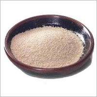 Instant Dry Yeast Powder