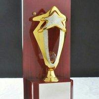 Wooden Plaque Star Trophy