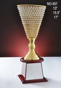 Diamond Vask Trophy